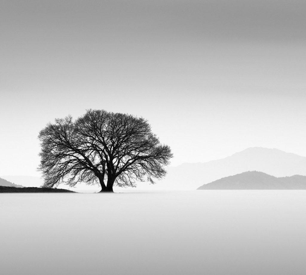 Japan by John Crowley