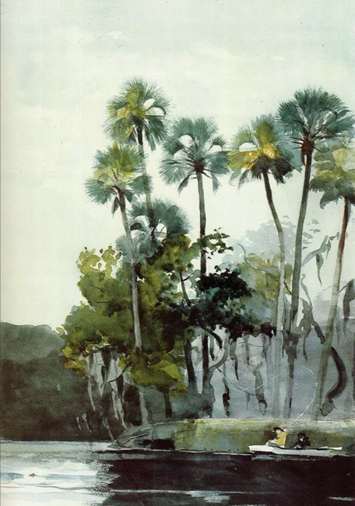 Homosassa River, Florida par Winslow Homer