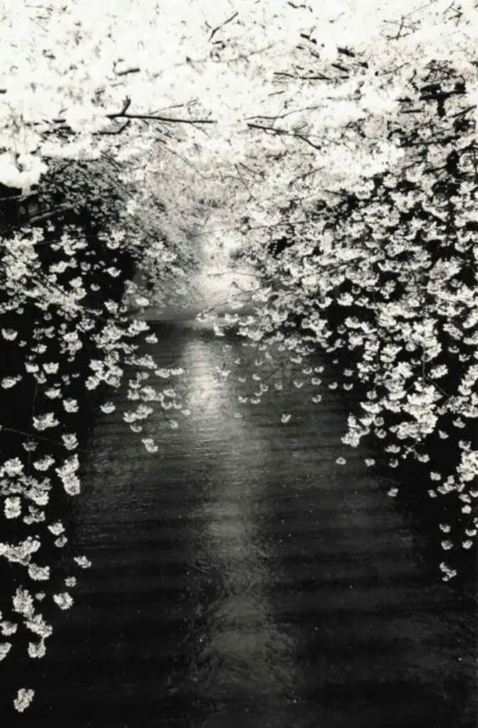 Photo de Masao Yamamoto