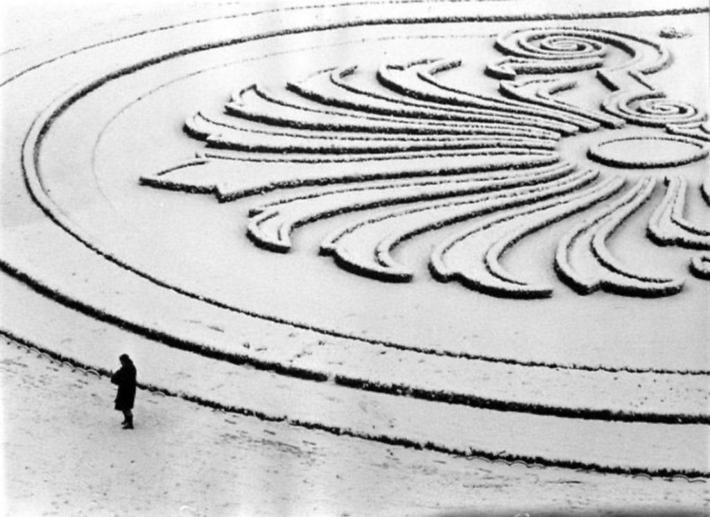 Fleur de neige par Robert Doisneau