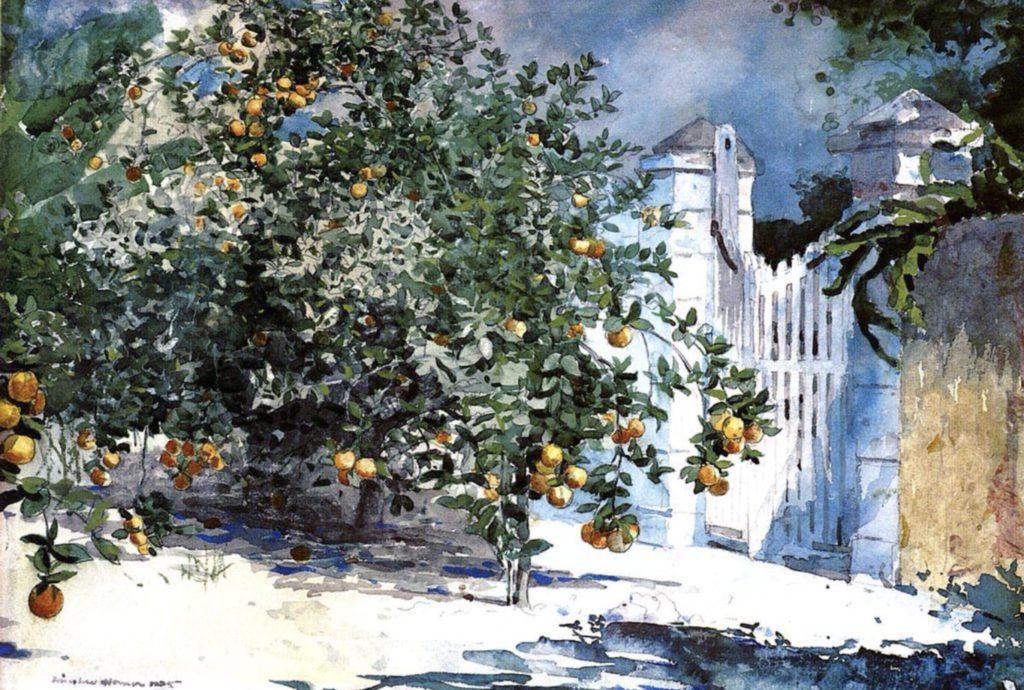Oranger à Nassau de Winslow Homer