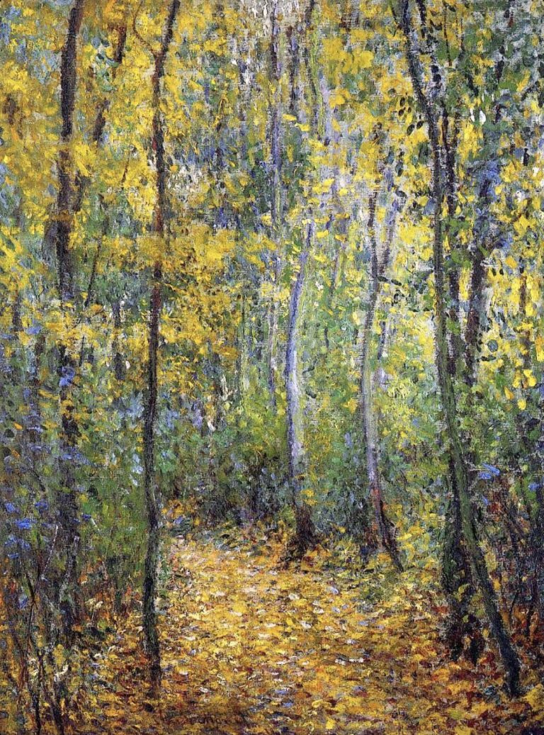 Chemin forestier de Claude Monet